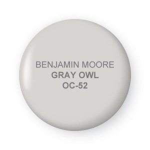gray owl chip